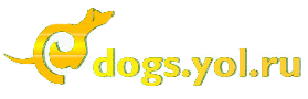 Dogs-Yol.Ru Forum